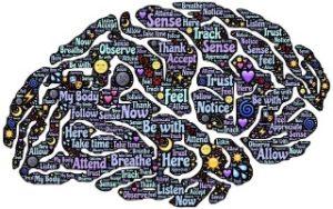 bewusstseins erweiterung